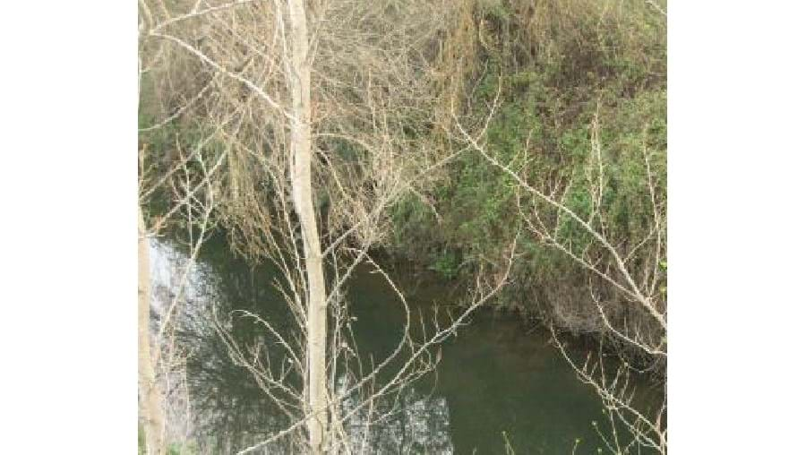 Cadáver foi encontrado nesta ribeira em Sousel
