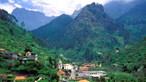 Madeira na lista verde britânica provoca aumento imediato de reservas