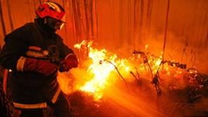 Catorze fogos activos em Portugal