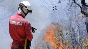 Chamas na Azambuja combatidas por mais de 90 bombeiros