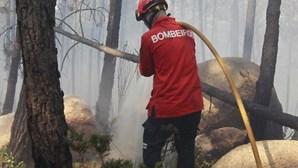 Fogo em Sintra combatido por 160 bombeiros