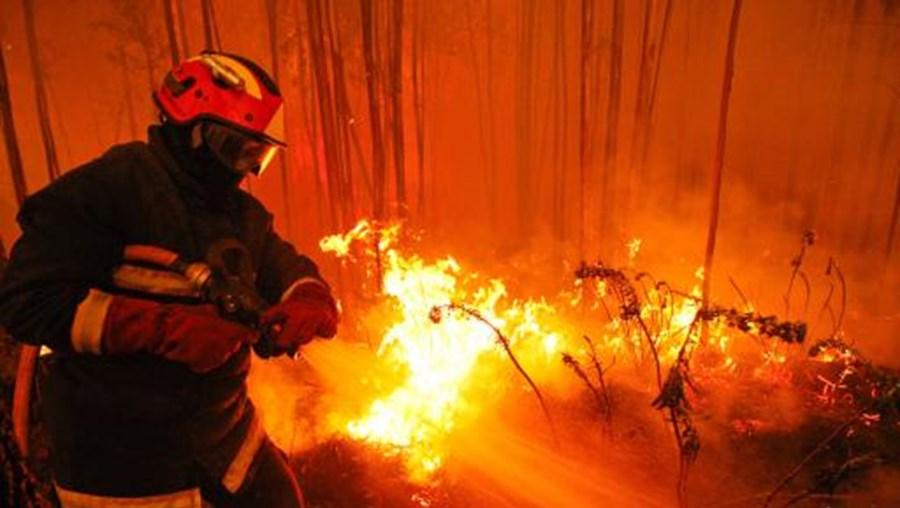 Fogos, bombeiros, incêndios, Protecção Civil