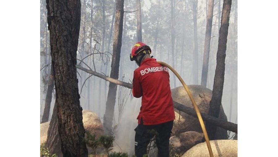 O incêndio nas Covas de Ferro, Sintra, está a ser combatido por 160 bombeiros