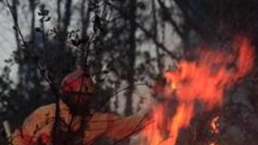 O dia com maior número de fogos registou-se na quinta-feira. Deflagraram 152 incêndios florestais