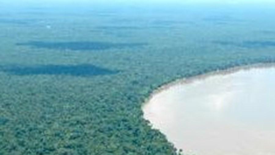 amazónia, brasil, gás, petróleo, bacia do solimões