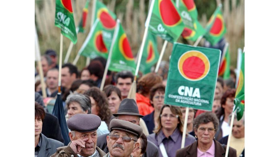 Agricultores deixam os tractores em casa e manifestam-se a pé na cidade de Aveiro