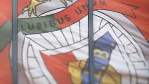 Empresa que transportou votos nas eleições do Benfica pertence ao segurança dos encarnados