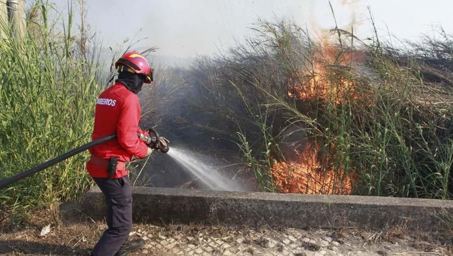risco de incêndio, distrito de Faro