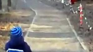 Menino entra em pânico com dinossauro robô (COM VÍDEO)