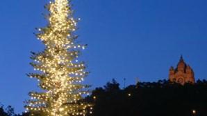 Viana do Castelo poupa no Natal