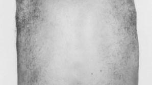 Exposição mostra corpo humano sem limites (COM FOTOS)