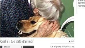 Itália: Idosa deixa dois milhões ao cão