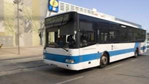Vimeca e TST reforçam transportes na Área Metropolitana de Lisboa