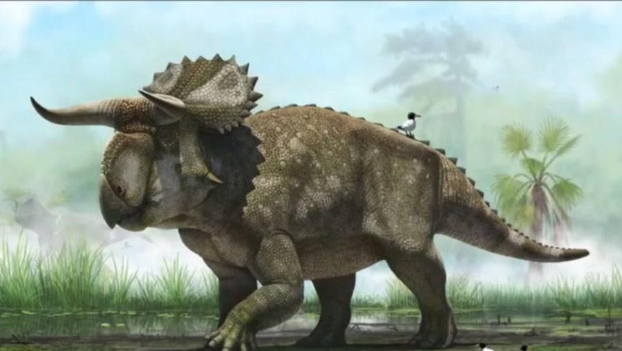 Os cientistas estimam que o novo dinossauro media cerca de cinco metros de comprimento