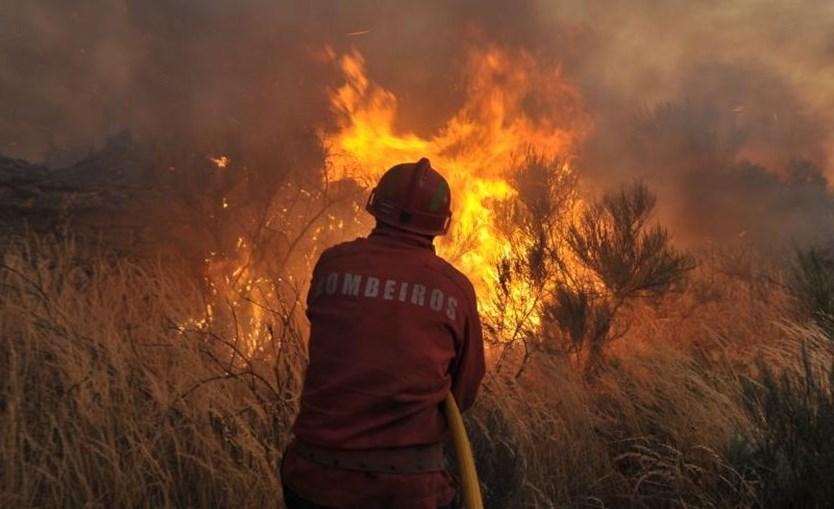 fogo, incêndio, chamas, funchal, madeira