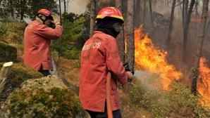 Dominado o incêndio em Gondomar