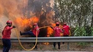Época de incêndios termina com nove mortos