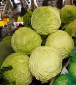 A couve é rica em antioxidantes que combatem o cancro, vitaminas, luteína e zeaxantina