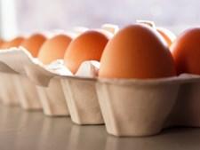 O ovo contém nutrientes, como a luteína, ómega 3 e vitamina E