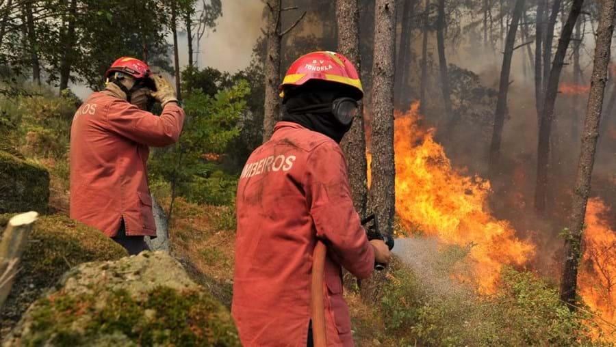 fogo, incêndio, chamas, bombeiros