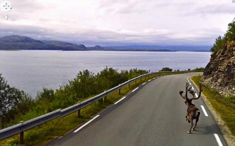 Alve em Lebesby, Noruega