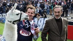 Lama raptado foi convidado para ir ao futebol