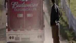 Brotherhood - Budweiser
