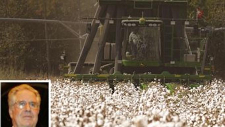 Cardoso e Cunha queria explorar algodão em Moçambique e foi pedir dinheiro emprestado ao Banco Português de Negócios