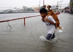 Criança transporta o seu cão durante uma cheia causada pelas chuvas em Manila, Filipinas