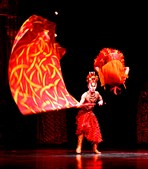 """Dralion' """"junta a arte milenar do Oriente com a tradição do Cirque du Soleil de fazer um aproximação multidisciplinar e multimédia ao circo'"""
