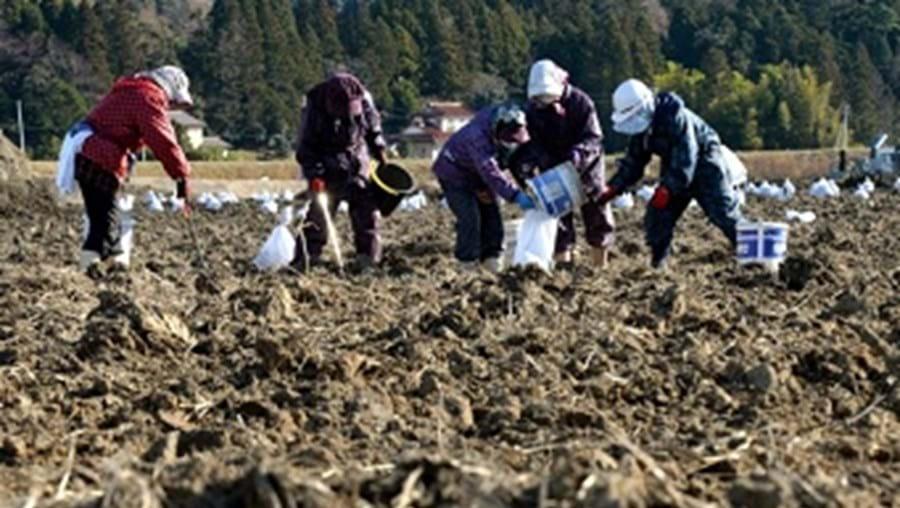 Fukushima dois anos depois do terramoto
