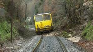 Quatro feridos em descarrilamento na Linha do Douro