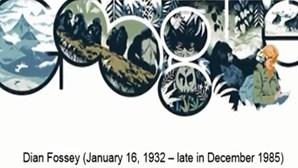 Google faz homenagem a Dian Fossey