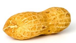 Amendoim trata alergia a... amendoim
