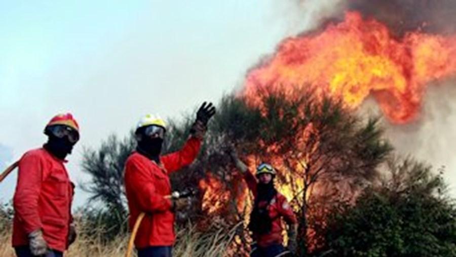 Arguidos atearam fogo para se vingarem da GNR