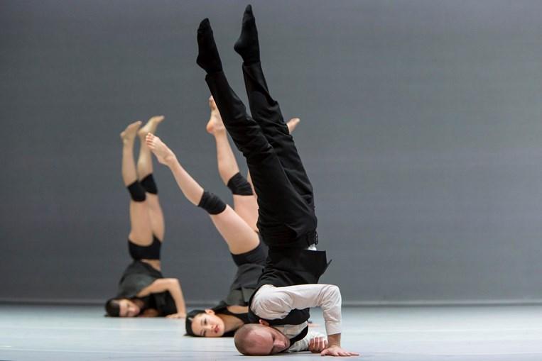 A companhia sueca traz a Lisboa dois bailados diferentes, para ver no Teatro Camões no final do mês