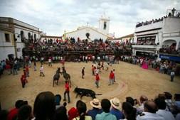 Tourada em Barrancos