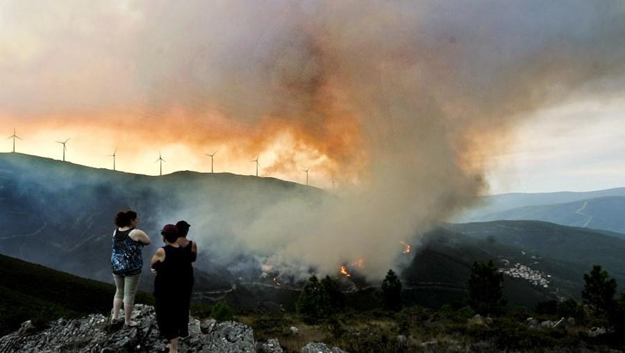 Em comparação com o mesmo período de 2013, as ocorrências de fogo diminuíram este ano para mais de metade