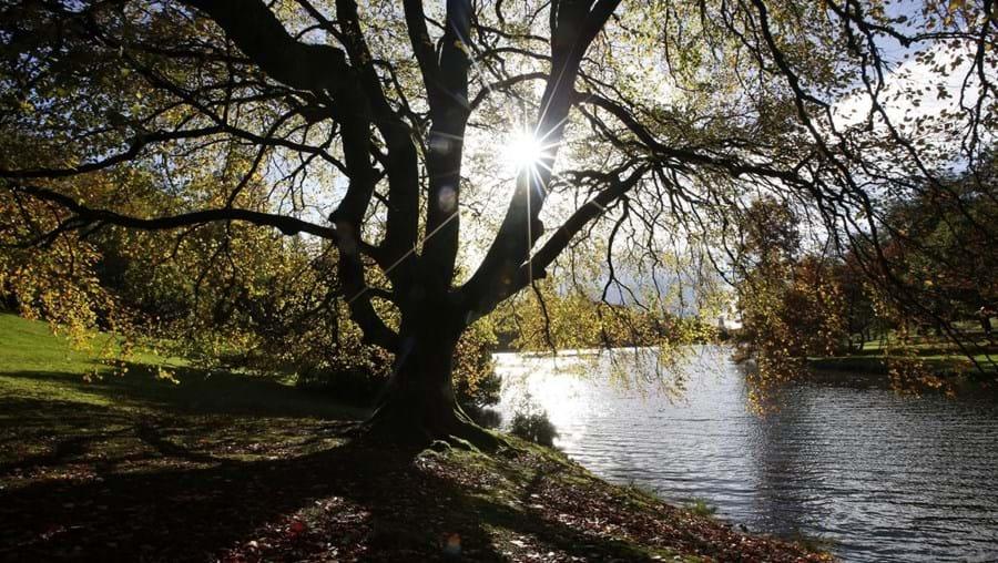 O outono começa amanhã