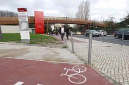 Ciclistas ganharam novos direitos e adquiriram um novo estatuto