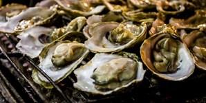É um cliché no romance, mas de facto as ostras são excelentes afrodisíacos. Estes bivalves são muito ricos em zinco, um mineral que aumenta a produção de testosterona e o desejo sexual