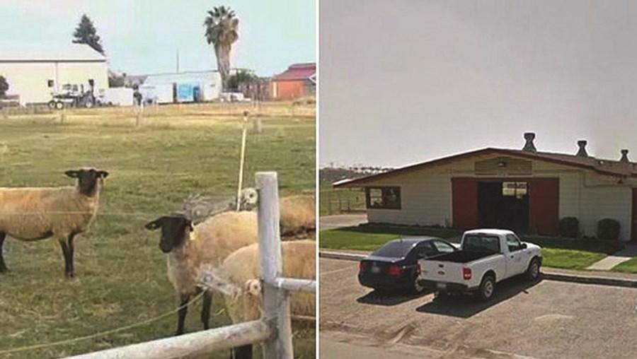 Incidente ocorreu em Fresno, no estado norte-americano da Califórnia