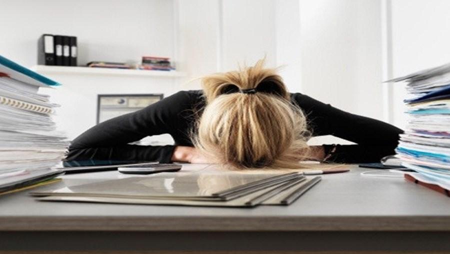 Estudo pode servir para criação de programas orientados para gestão do stress