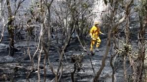 Tribunal aprova indemnização recorde por fogos na Austrália