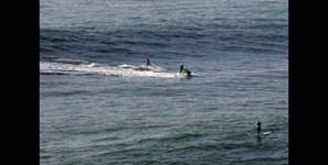 As ondas gigantes não se apanham sozinhas. É preciso a ajuda de uma moto de água, que 'reboca' o surfista até ao cima da onda, numa técnica conhecida por 'tow in'