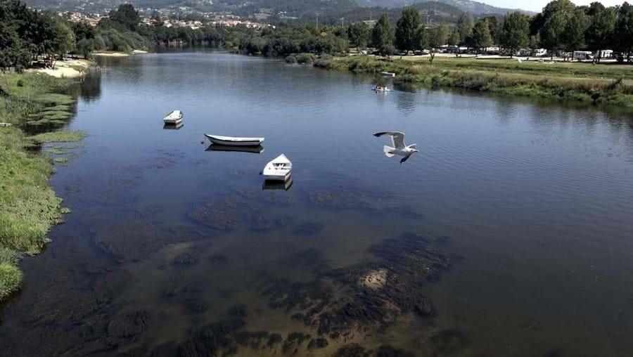 Homem está desaparecido em rio Lima, em Ponte de Lima