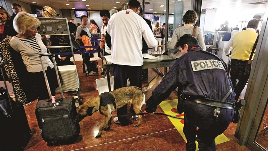 Autoridades francesas reforçaram vigilância nos aeroportos para travar partida de jihadistas