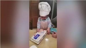 Bebé é mestre a... partir ovos