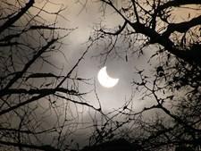 O eclipse solar parcial de 4 de janeiro de 2011 ocorreu demasiado cedo para ser visível em Portugal, mas a Europa central conseguiu observar a efeméride, como foi o caso da Roménia, local onde foi tirada esta fotografia