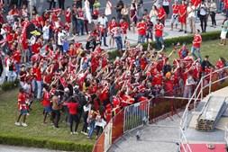 Adeptos festejam no Marquês de Pombal, em Lisboa